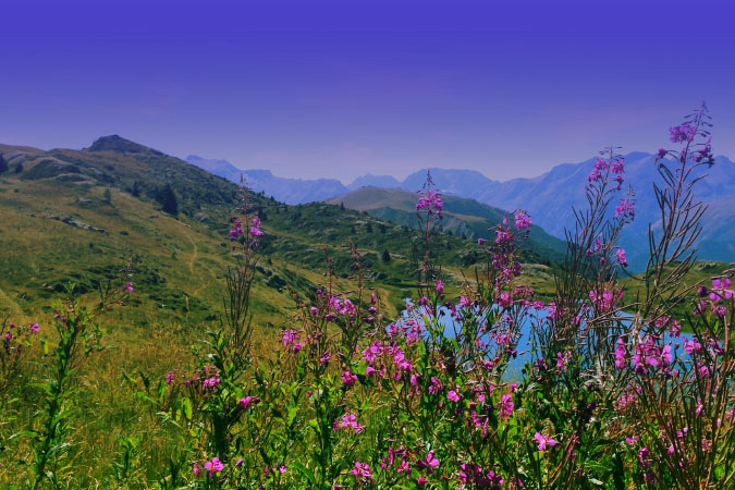 Alpine lakes and spring flowers at 2000m trekking